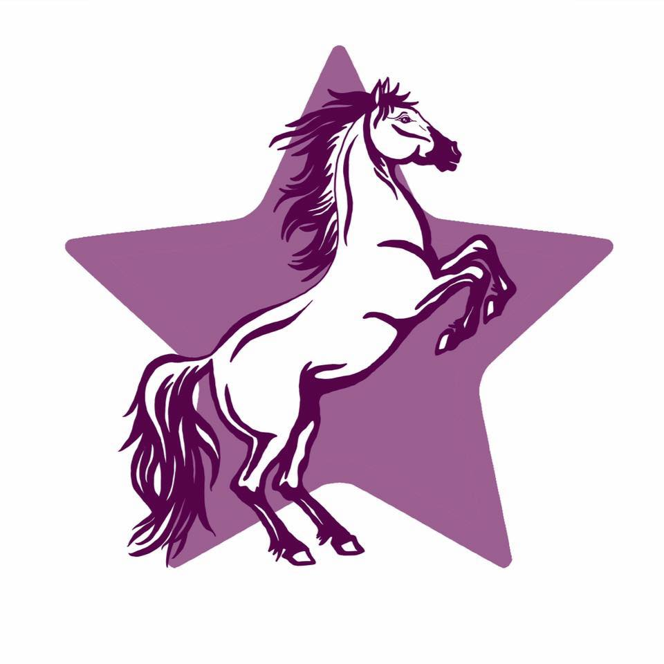 Praten met paarden